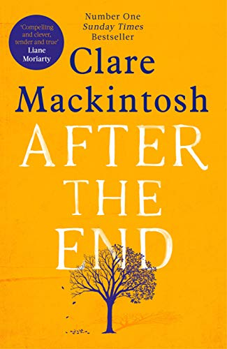 After the end /  Mackintosh, Clare, author