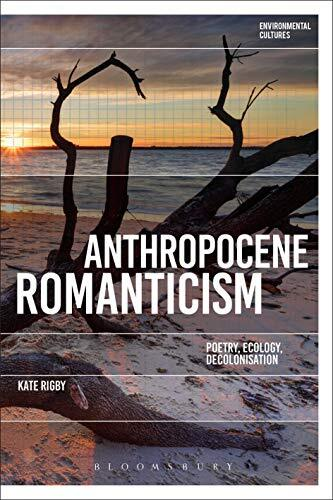 Reclaiming romanticism : towards an ecopoetics of decolonisation /  Rigby, Kate, author