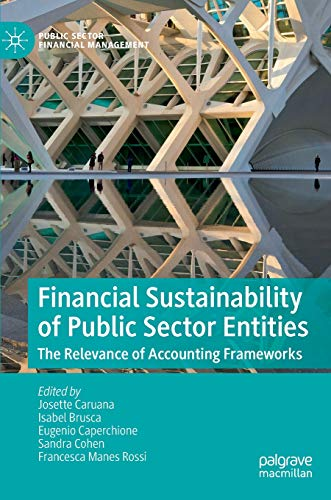 Financial sustainability of public sector entities : the relevance of accounting frameworks